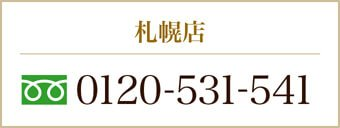 0120-531-541